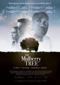 the-mulberry-tree_juniper-post